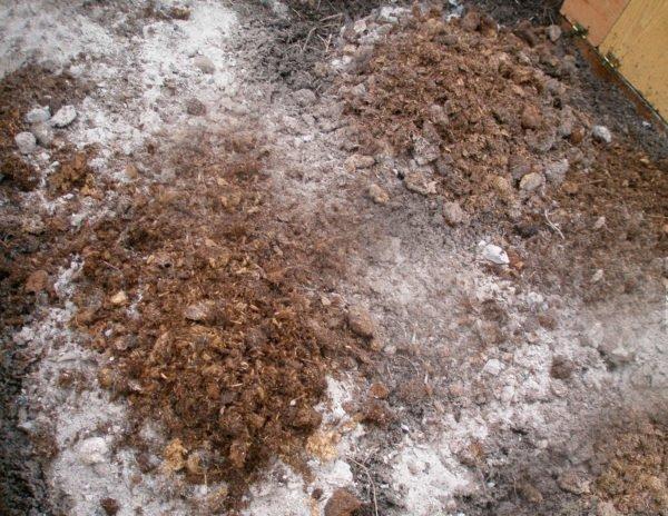 Ceniza de madera aporte potasion cultivo exterior