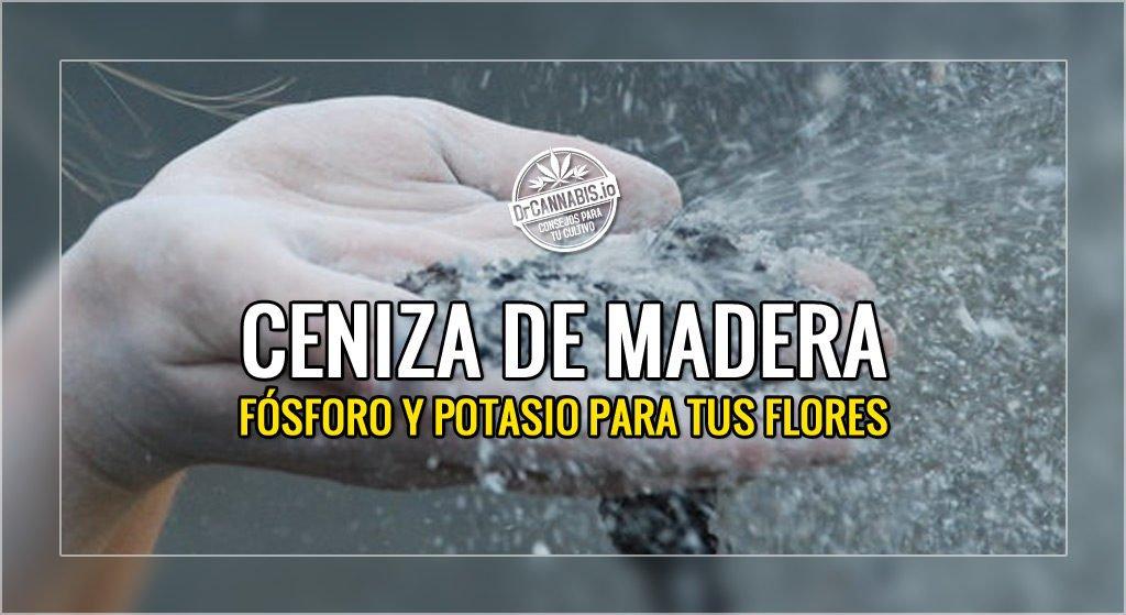 Ceniza de Madera aportar Fosforo y Potasio