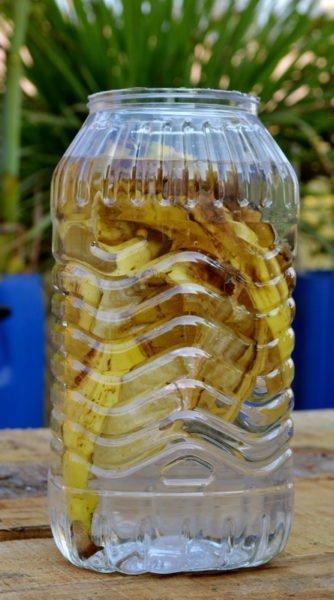 Paso 1 Te Banana cáscaras para Potasio en Flacion