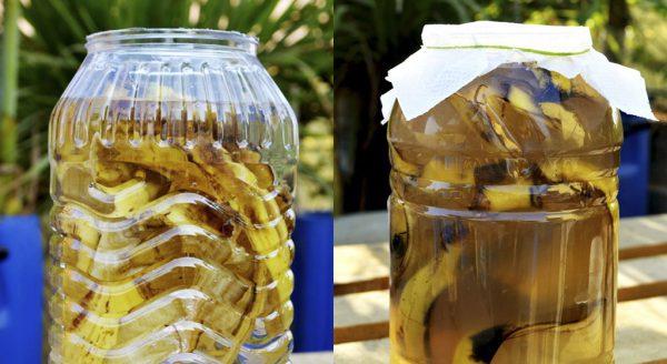 banana-peel-potassium2