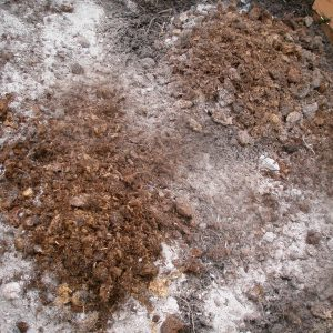 wood-ash-add-potassium-outdoors-crop