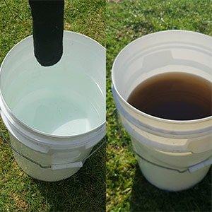 worm-castings-tea
